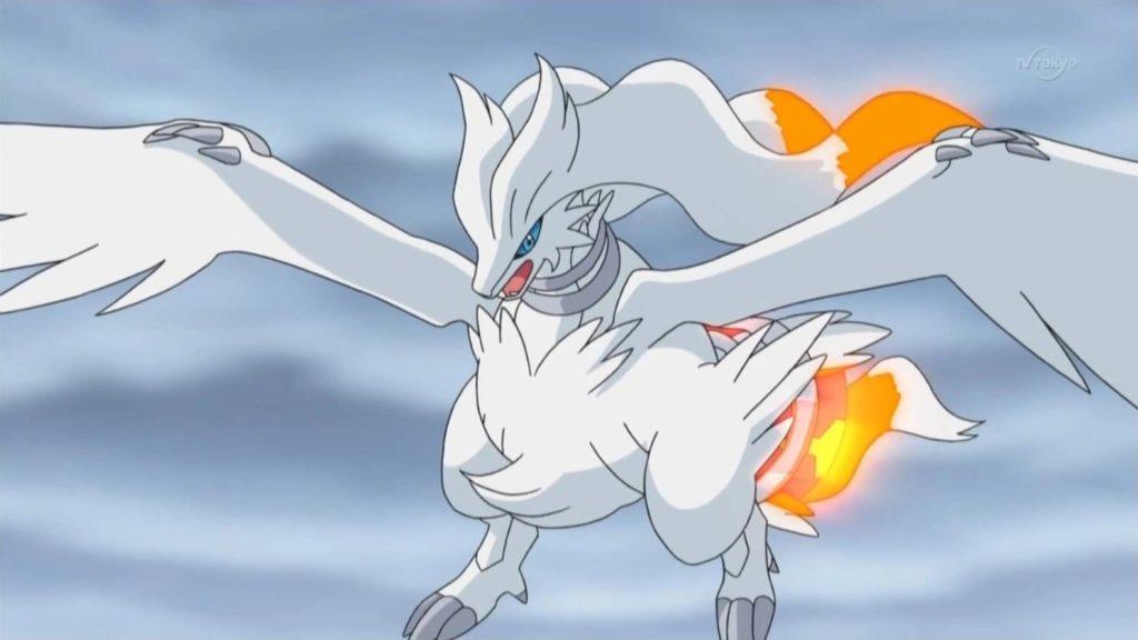 best fire pokemon today
