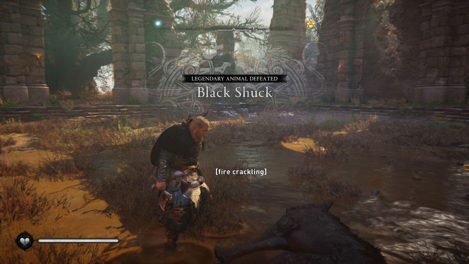 ac valhalla - black shuck walkthrough