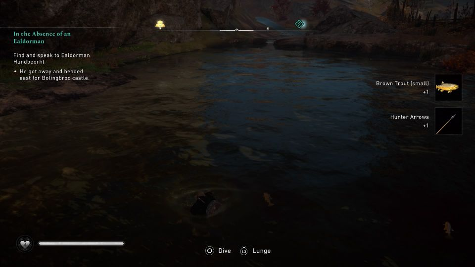 ac valhalla brown trout where to fish