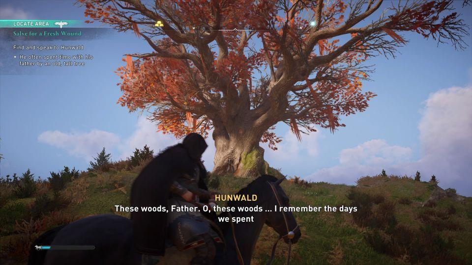 ac valhalla - salve for a fresh wound wiki