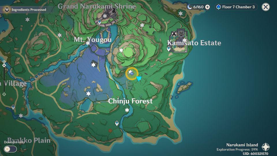 Genshin Impact: Hayashi Of Tanuki In The Forest location