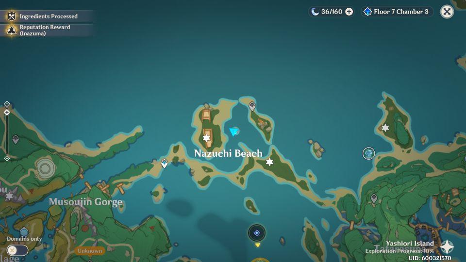 Genshin Impact: Seelie Puzzle In Nazuchi Beach Guide walkthrough